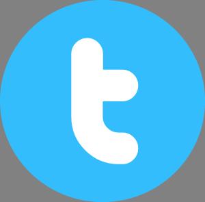 Twitter-Logo-png-2